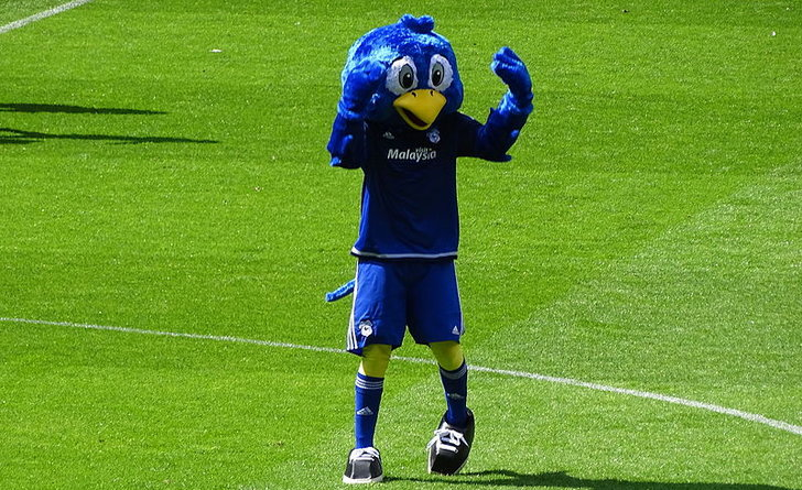 Cardiff City Fc Wales Cardiff City Stadium Guide Welsh